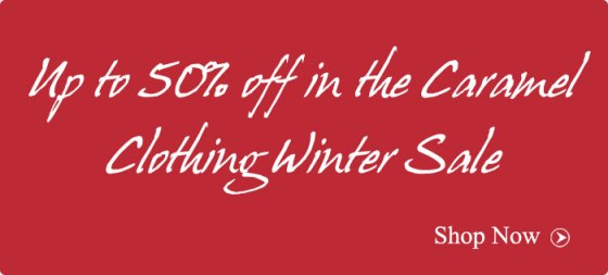 winter-sale-2013-blog